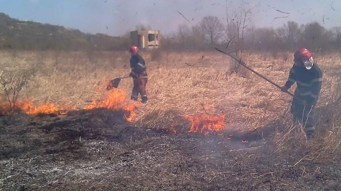 cuantum amendă incendiu vegetatie